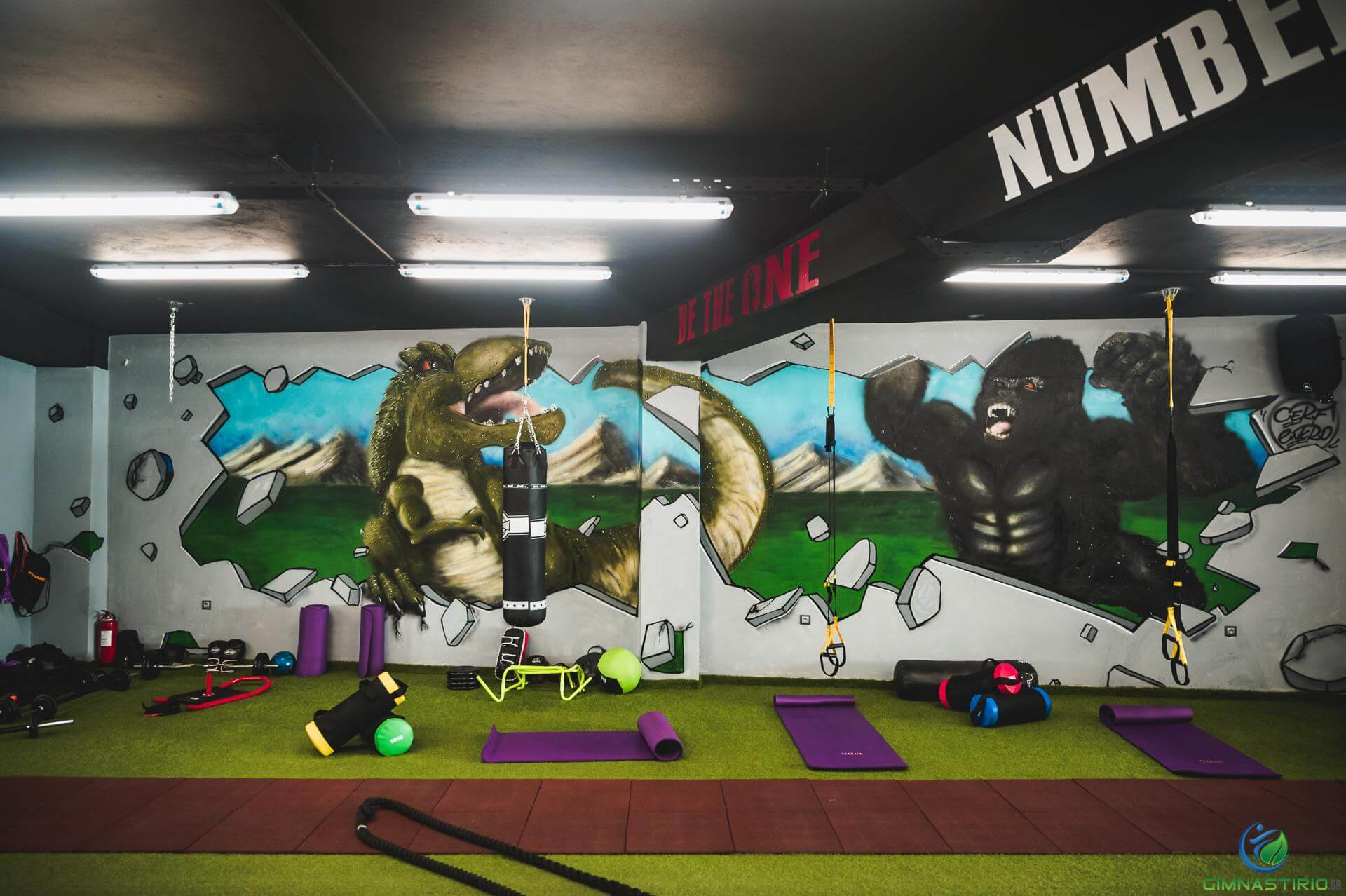 Kong vs T-Rex mural in Gym (Be the one number 1)